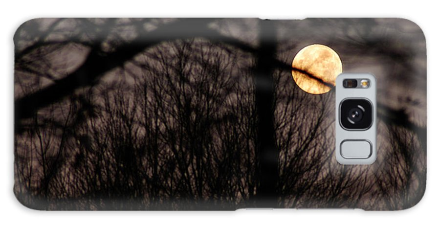 Clay Galaxy Case featuring the photograph Haunted Forest by Clayton Bruster