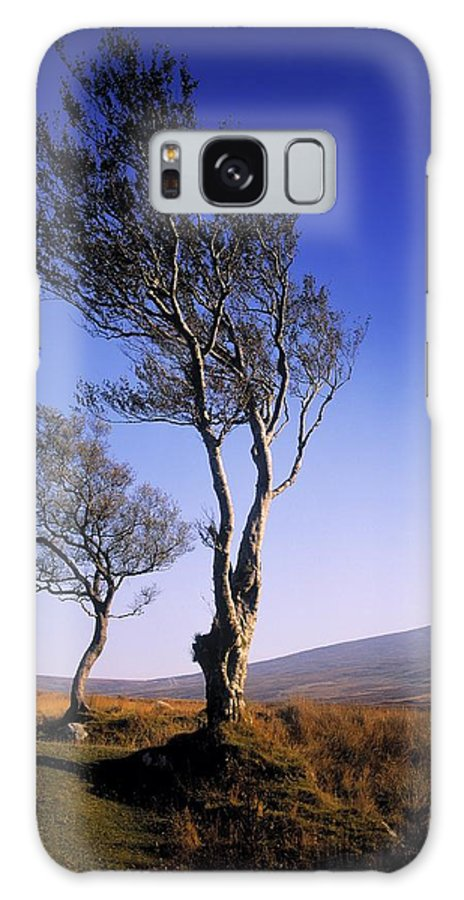Scenery Galaxy S8 Case featuring the photograph Hawthorn Trees In Sally Gap, County by The Irish Image Collection