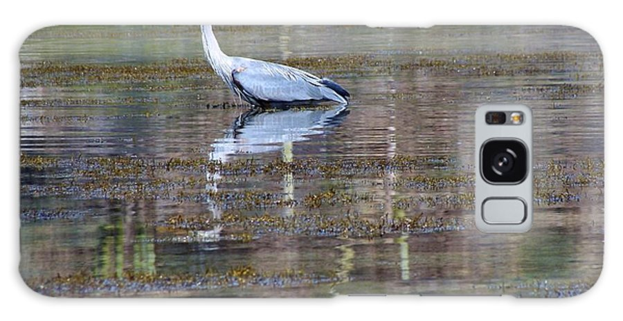 Great Galaxy S8 Case featuring the photograph Heron Fishing by Ramie Liddle