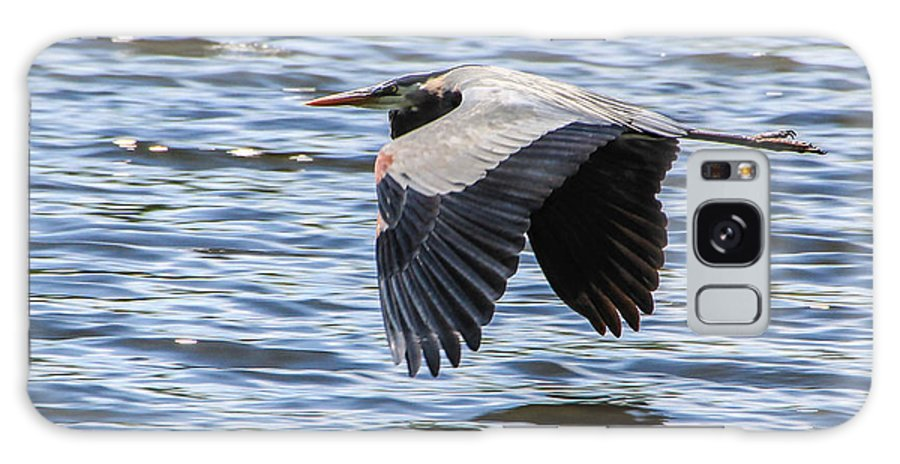 Heron Galaxy S8 Case featuring the photograph Heron Over Water by Kaye Seaboch