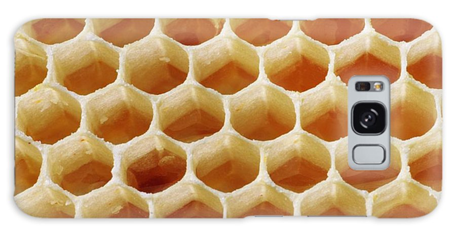 Honey Galaxy S8 Case featuring the photograph Honey In Wax Honeycomb Cells by Cordelia Molloy
