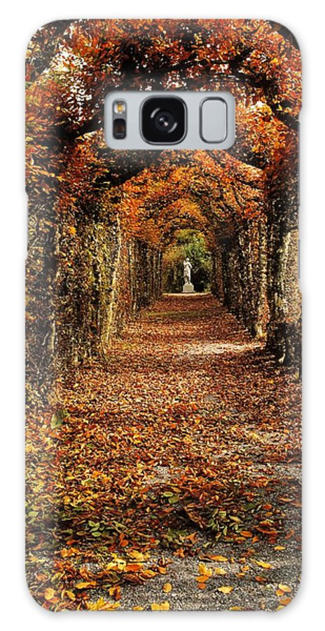 Atmosphere Galaxy S8 Case featuring the photograph Hornbeam Alles, Birr Castle, Co Offaly by The Irish Image Collection