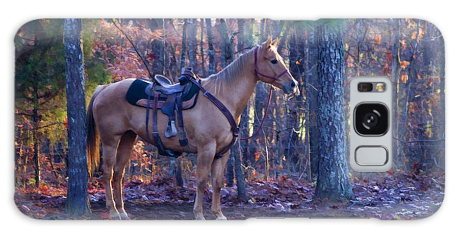 Horse Galaxy S8 Case featuring the photograph Horse Waiting For Rider by Kathy Clark