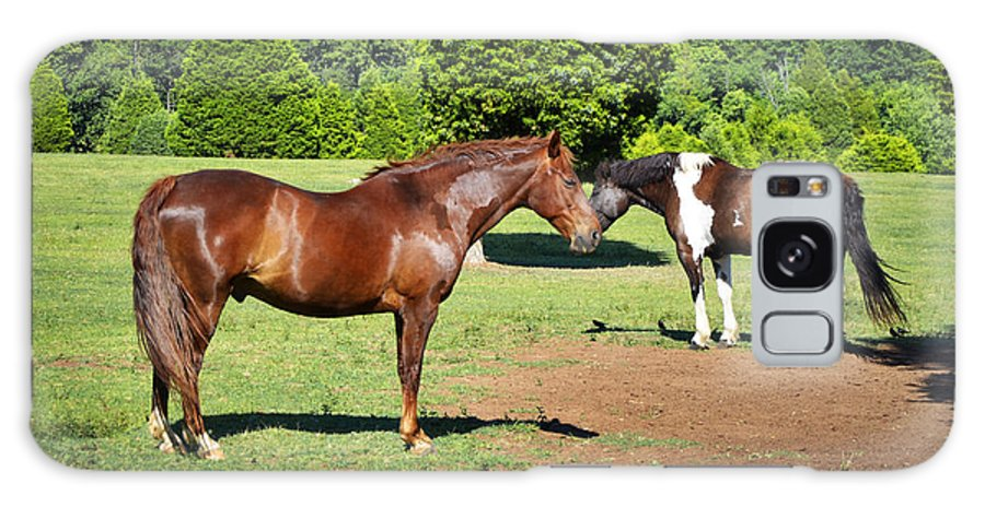 Horses Galaxy S8 Case featuring the photograph Horses Of A Different Color by Paul Mashburn