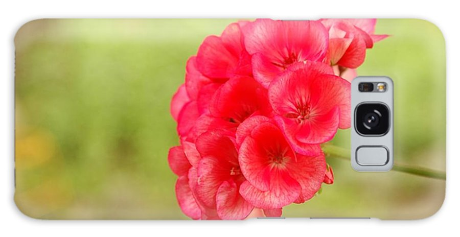 Hot Galaxy S8 Case featuring the photograph Hot Pink Geranium by Maria isabel Villamonte