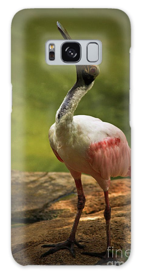Zoo Animals Galaxy S8 Case featuring the photograph I Am by Kim Henderson