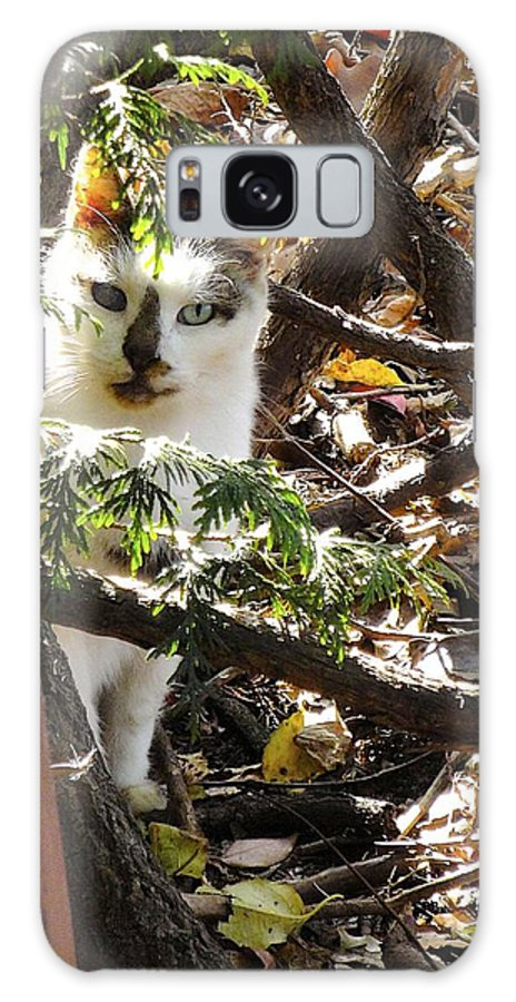 Feral Galaxy S8 Case featuring the photograph I Trust You by Jane Alexander