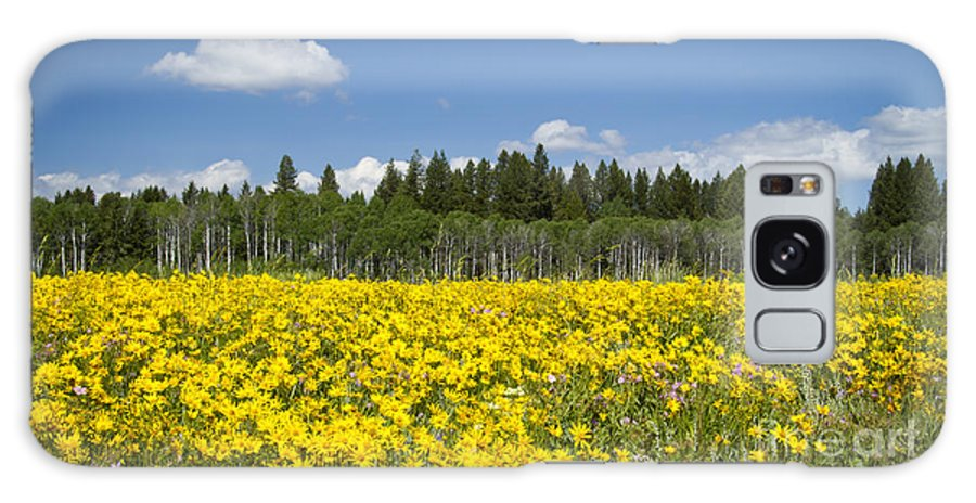 Caribou-targhee National Forest Galaxy S8 Case featuring the photograph Idyllic Summer Day by Idaho Scenic Images Linda Lantzy