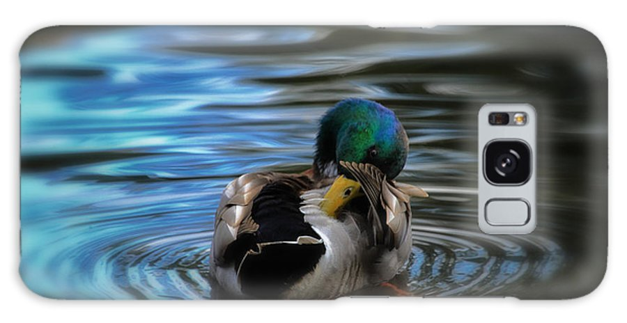 Mallard Galaxy S8 Case featuring the photograph In His Own Moment by Karol Livote