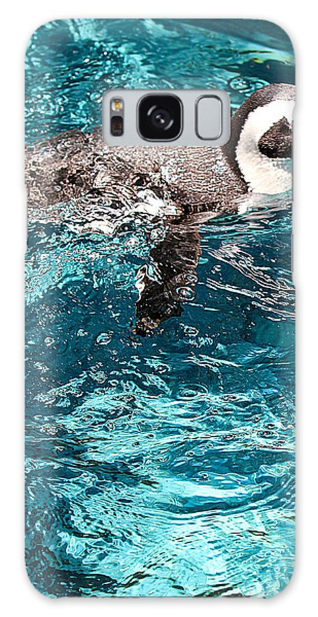 Penguin Galaxy S8 Case featuring the photograph In The Swim by Elizabeth Hart