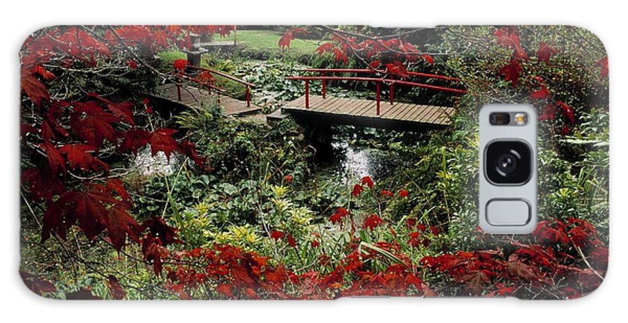Acer Galaxy S8 Case featuring the photograph Japanese Garden, Through Acer In by The Irish Image Collection
