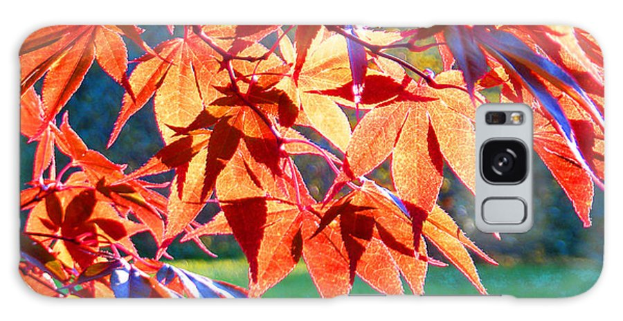 Fall Galaxy S8 Case featuring the photograph Japanese Maple Leaves 6 In The Fall by Duane McCullough