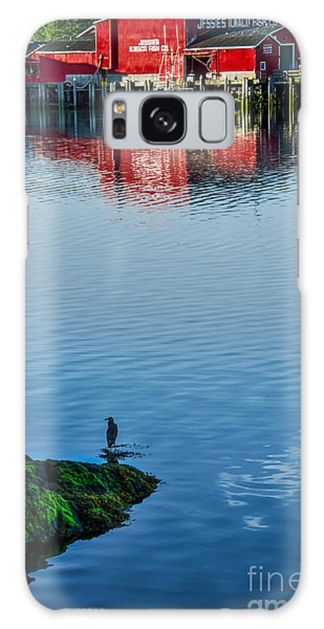 Ilwaco Galaxy S8 Case featuring the photograph Jessie's by Robert Bales