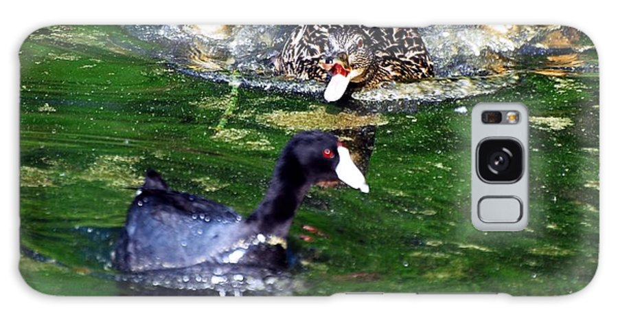 Duck Galaxy S8 Case featuring the photograph Keep Your Distance by Don Mann