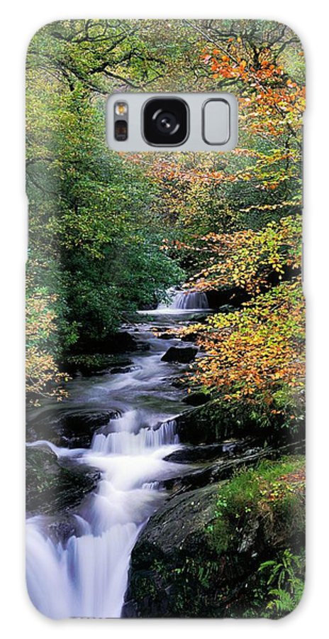 Autumn Leaves Galaxy S8 Case featuring the photograph Killarney National Park, Ring Of Kerry by The Irish Image Collection