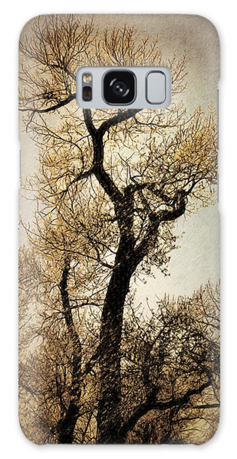 Tree Galaxy S8 Case featuring the digital art King Of The Forest by Diane Dugas