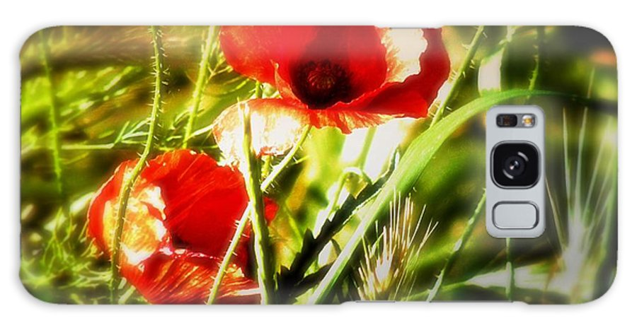 Poppy Galaxy S8 Case featuring the photograph Kissed By The Setting Sun by Mimulux patricia No