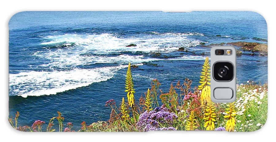 La Jolla Galaxy S8 Case featuring the photograph La Jolla Coast by Carla Parris