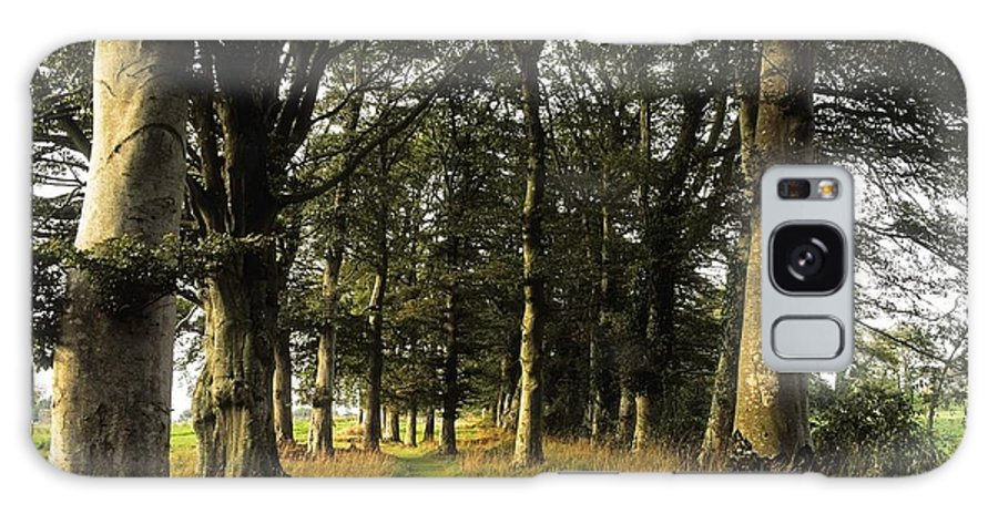 Tree Galaxy S8 Case featuring the photograph Larchill Arcadian Garden, County by The Irish Image Collection