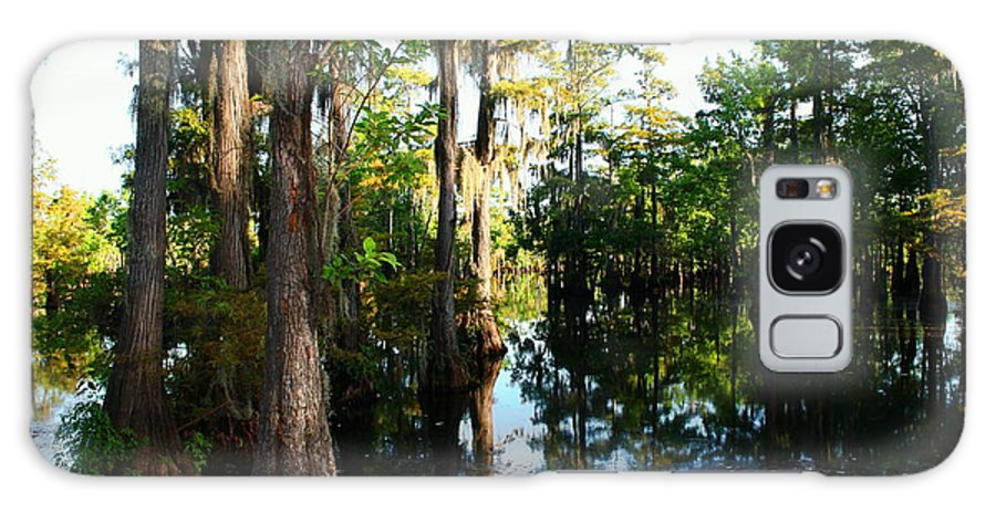 Swamp Galaxy S8 Case featuring the photograph Late Afternoon At The Swamp by Ester Rogers