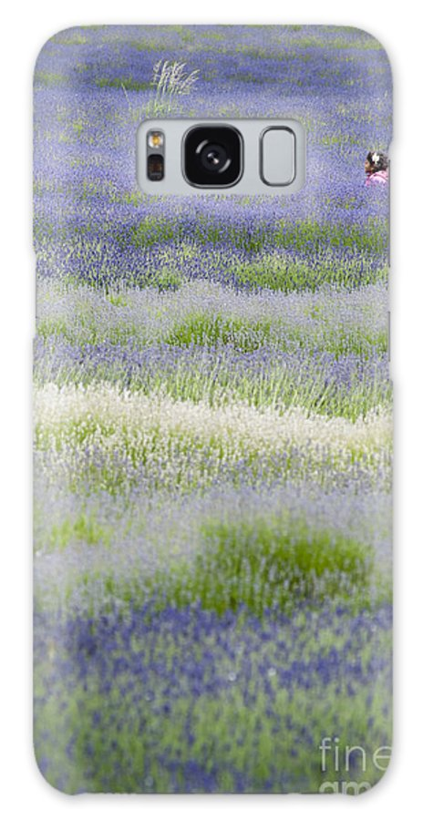 Britain Galaxy S8 Case featuring the photograph Lavender Field by Andrew Michael