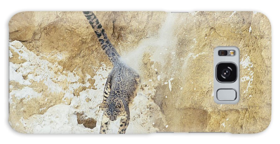 Snow Leopard Galaxy S8 Case featuring the photograph Leap Of Faith by D Robert Franz
