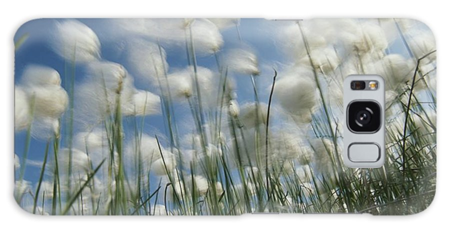 dandelion Plants Galaxy S8 Case featuring the photograph Like Spots Of White Clouds, The Aging by Michael Melford