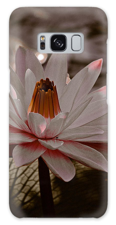 Lily Galaxy S8 Case featuring the photograph Lil Peachy by Trish Tritz