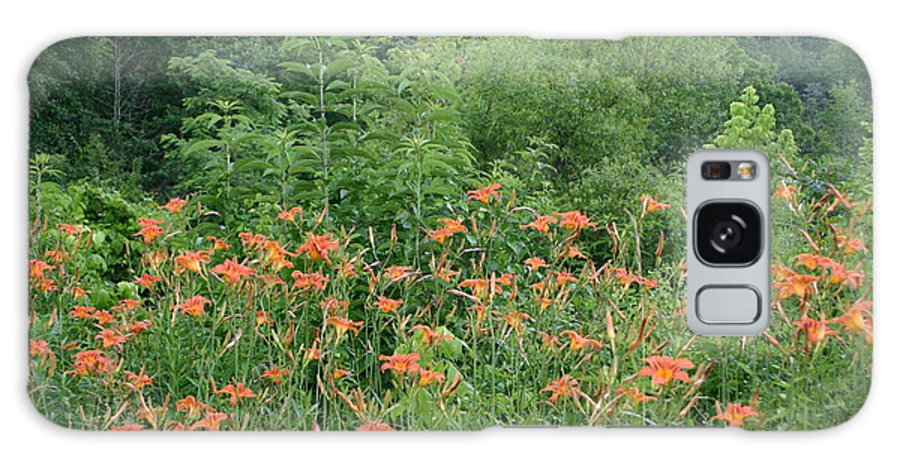 Lillies Galaxy S8 Case featuring the photograph Lillies In The Valley by Leann DeBord