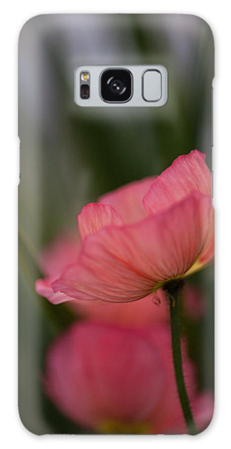 Poppy Galaxy S8 Case featuring the photograph Lines Of Floral by Mike Reid