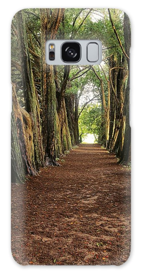 County Waterford Galaxy S8 Case featuring the photograph Lismore, County Waterford, Ireland by The Irish Image Collection