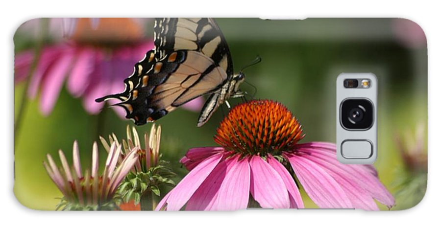 Butterfly Galaxy S8 Case featuring the photograph Living Color by Living Color Photography Lorraine Lynch