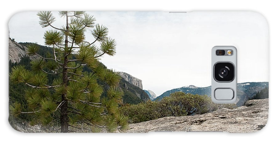 Yosemite National Park Galaxy S8 Case featuring the photograph Lonely Pine by Lorraine Devon Wilke