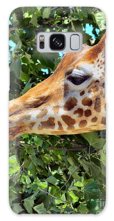 Giraffe Galaxy S8 Case featuring the photograph Long Profile by Art Dingo
