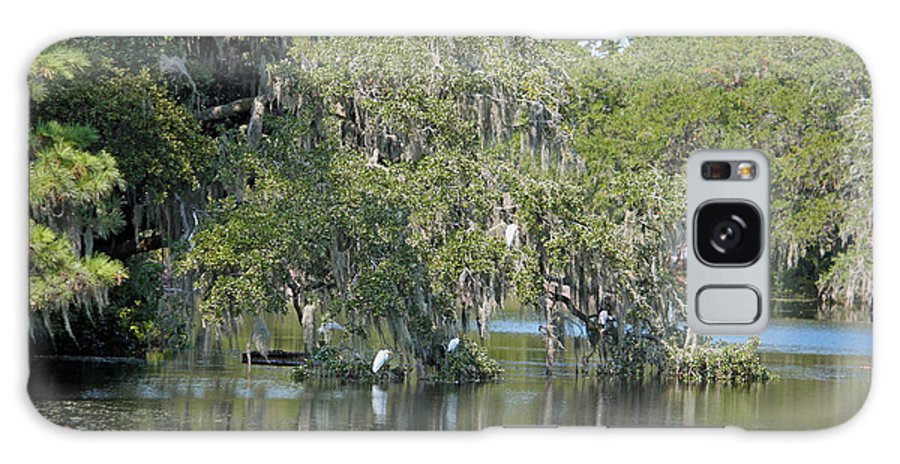 Lowcountry Galaxy S8 Case featuring the photograph Lowcountry Landscape by Suzanne Gaff