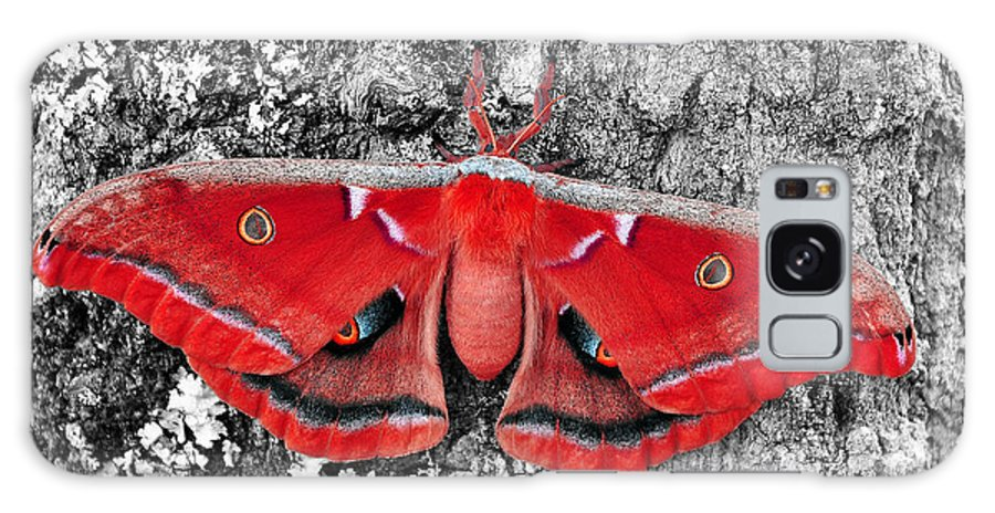 Moth Galaxy S8 Case featuring the photograph Madam Moth - Red White And Black by Al Powell Photography USA