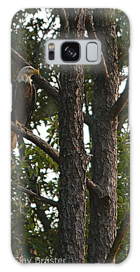 All Rights Reserved Galaxy Case featuring the photograph Majestic Bald Eagle by Clayton Bruster