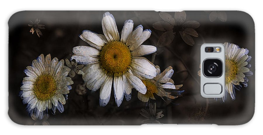 Floral Galaxy S8 Case featuring the photograph May Evenings by Ron Jones