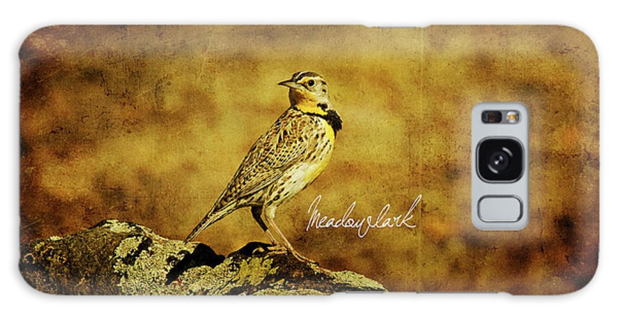 Eastern Galaxy S8 Case featuring the photograph Meadowlark by Lana Trussell