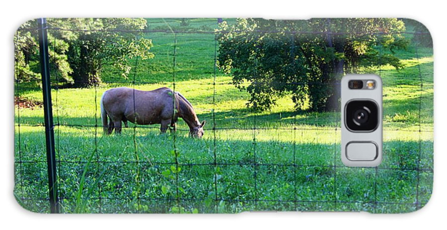 Horse Galaxy S8 Case featuring the photograph Meal Time by Ester Rogers
