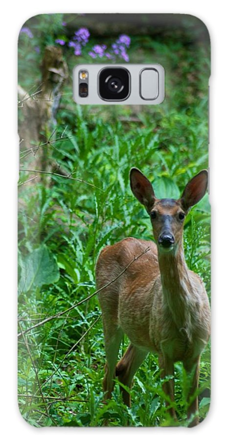 Animal Galaxy S8 Case featuring the photograph Michigan Whitetail 7344 by Michael Peychich