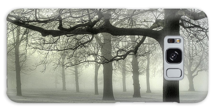 Trees Galaxy S8 Case featuring the photograph Misty Morning by Andy Linden