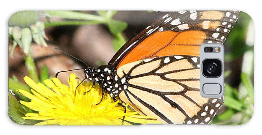 Galaxy S8 Case featuring the photograph Monarch Feeding by Mark J Seefeldt