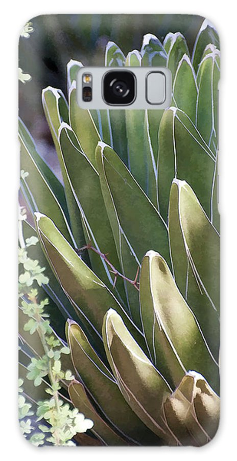Cactus Galaxy S8 Case featuring the photograph Morning Light by Diane Wood