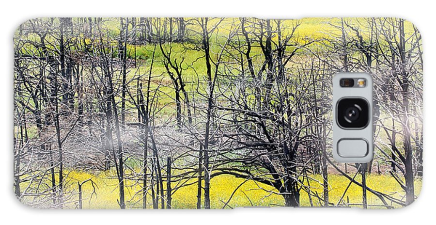 Tree Galaxy S8 Case featuring the photograph Morning Mist by Elizabeth Hart