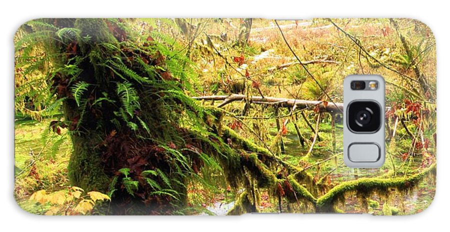 Hoh Rainforest Galaxy S8 Case featuring the photograph Mossy Bend by Adam Jewell