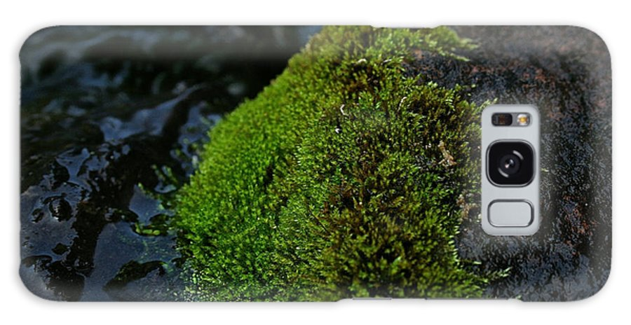 Outdoors Galaxy S8 Case featuring the photograph Mossy River Rock by Susan Herber