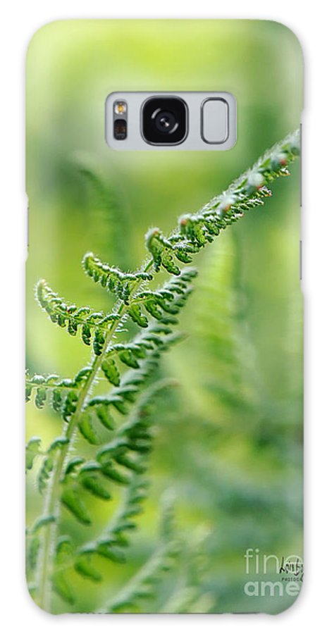 Fern Galaxy S8 Case featuring the photograph Mountain Fern by Lois Bryan