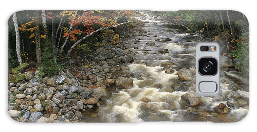 Creeks And Streams Galaxy S8 Case featuring the photograph Mountain Stream In Autumn, White by Medford Taylor