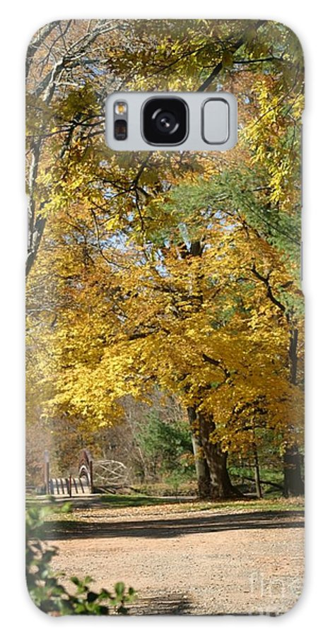 Landscape Galaxy S8 Case featuring the photograph My Golden Days by Living Color Photography Lorraine Lynch